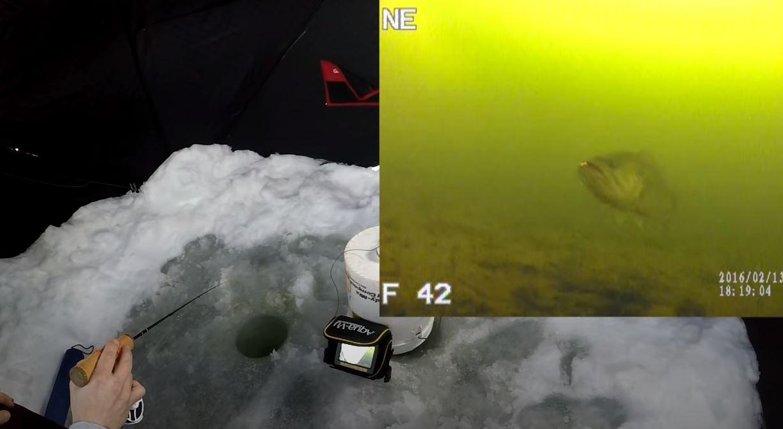 underwater ice fishing camera