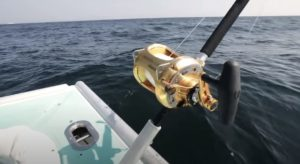 this is important to remember when buying marine fishing reels