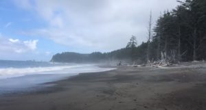 first time at ozette loop olympic national park washington