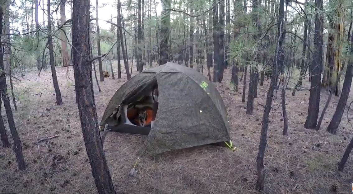 fathers day summer camping tips