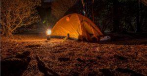 how-to-choose-a-picnic-lantern